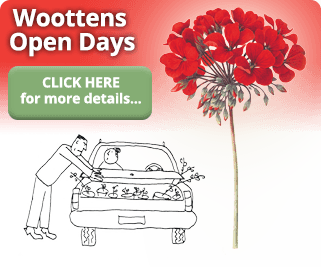 Woottens Plants open days
