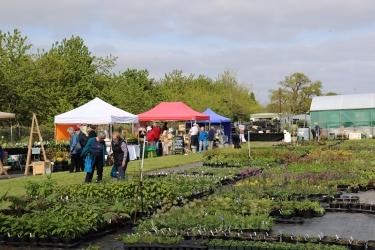 Woottens of Wenhaston Plant and Garden Fair